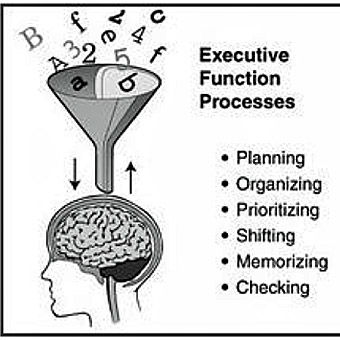 ExecutiveFunction