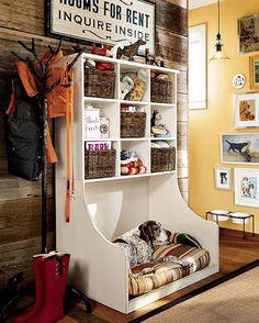 organized dogs