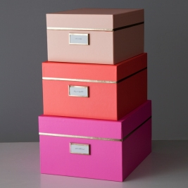 organized pink box - organized taxes