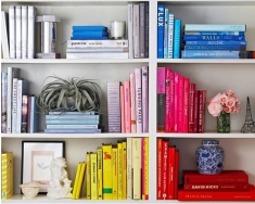 organized book shelf