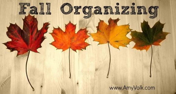 fall-organizing